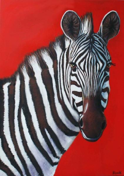 Tierportraits rot: Zebra