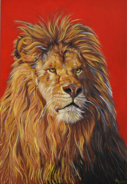Tierportrait: Löwe