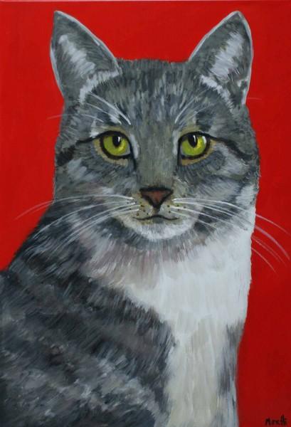 Acrylbilder modern: Katze